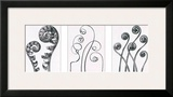 Art Forms in Nature I Prints by Karl Blossfeldt