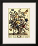 November Prints by Robert Furber