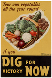 Dig for Victory WWII War Propaganda Plastic Sign Plastové cedule