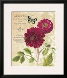 Red Dahlias Posters by Paula Scaletta