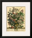 July Print by Robert Furber