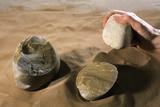 Olduwan Stone Tools Posters by Javier Trueba