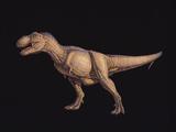 Tyrannosaurus Rex Posters by Joe Tucciarone