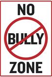 No Bully Zone Classroom Plastic Sign Plastic Sign