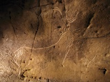 Stone-age Cave Art, Asturias, Spain Photographic Print by Javier Trueba