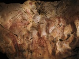 Stone-age Cave Paintings, Asturias, Spain Photographic Print by Javier Trueba