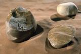 Olduwan Stone Tools Poster by Javier Trueba