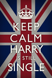 Keep Calm Harry is Still Single Plastic Sign Wall sign