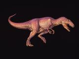 Giganotosaurus Dinosaur Photographic Print by Joe Tucciarone