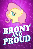 Brony and Proud Pony Plastic Sign Wall Sign