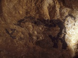 Stone-age Cave Paintings, Lascaux, France Photographic Print by Javier Trueba