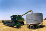 Harvesting Grain Print by Jeremy Walker