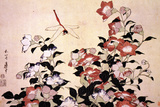 Katsushika Hokusai Chinese Bell Flowers and a Happy Dragon-fly Plastic Sign Wall Sign von Katsushika Hokusai