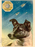 Laika the Space Dog Postcard Prints by Detlev Van Ravenswaay