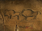 Stone-age Cave Paintings, Asturias, Spain Fotografisk trykk av Javier Trueba