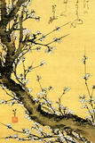 Katsushika Hokusai Flowering Plum Tree Plastic Sign Wall Sign von Katsushika Hokusai