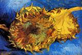 Vincent Van Gogh Two Cut Sunflowers 3 Plastic Sign Plastic Sign by Vincent van Gogh
