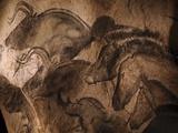 Stone-age Cave Paintings, Chauvet, France Fotoprint van Javier Trueba
