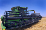 Harvesting Grain Photographic Print by Jeremy Walker