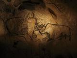 Javier Trueba - Stone-age Cave Paintings, Chauvet, France - Fotografik Baskı
