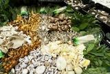 Edible Fungi At a Market Reprodukcja zdjęcia autor Jeremy Walker