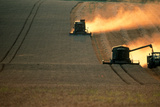 Combine Harvesters And Tractor Working In a Field Photographic Print by Jeremy Walker