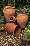 Terracotta Pots Photographic Print by Adrian Thomas