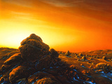 Artwork of Sunrise Over the Surface of Mars Photographic Print by Detlev Van Ravenswaay