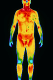 Thermogram of a Standing Naked Man (front View) Photographic Print by Dr. Arthur Tucker