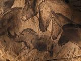 Stone-age Cave Paintings, Chauvet, France Fotografisk tryk af Javier Trueba