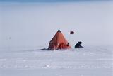 Antarctic Field Camp Print by David Vaughan