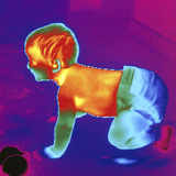 Thermogram of a Baby Photographic Print by Dr. Arthur Tucker