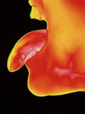 Thermogram of a Woman Sticking Her Tongue Out Photographic Print by Dr. Arthur Tucker