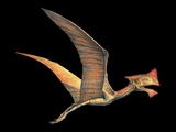 Tapejara Pterosaur Photographic Print by Joe Tucciarone