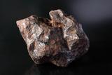 Campo Del Cielo Meteorite Fragment Poster by Detlev Van Ravenswaay