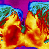 Thermogram of a Man And Woman Kissing Photographic Print by Dr. Arthur Tucker