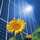 Solar Power, Conceptual Artwork Photographic Print by Detlev Van Ravenswaay
