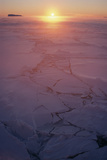 Sunset In Antarctica Poster by David Vaughan