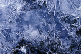 Ice Crystals Photographic Print by Dr. Keith Wheeler