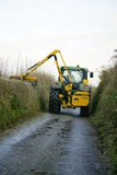 Hedge Cutting Photo by Dr. Keith Wheeler