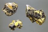 Uranium-bearing Mineral Rocks Fotografisk tryk af Dirk Wiersma