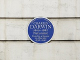 Charles Darwin Commemorative Plaque Photographic Print by  SEYMOUR