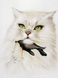 Domestic Cat, Conceptual Image Premium Photographic Print by  SMETEK