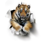 Tiger, Artwork Premium Photographic Print by  SMETEK