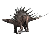 Kentrosaurus Dinosaur, Artwork Photographic Print by  SCIEPRO