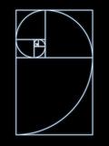 SEYMOUR - Fibonacci Spiral, Artwork - Fotografik Baskı