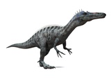 Suchomimus Dinosaur, Artwork Photographic Print by  SCIEPRO
