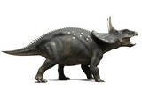 Nedoceratops Dinosaur, Artwork Photographic Print by  SCIEPRO