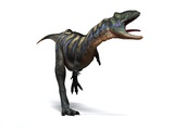 Aucasaurus Dinosaur, Artwork Photographic Print by  SCIEPRO