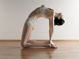 Yoga, Artwork Premium Photographic Print by  SCIEPRO